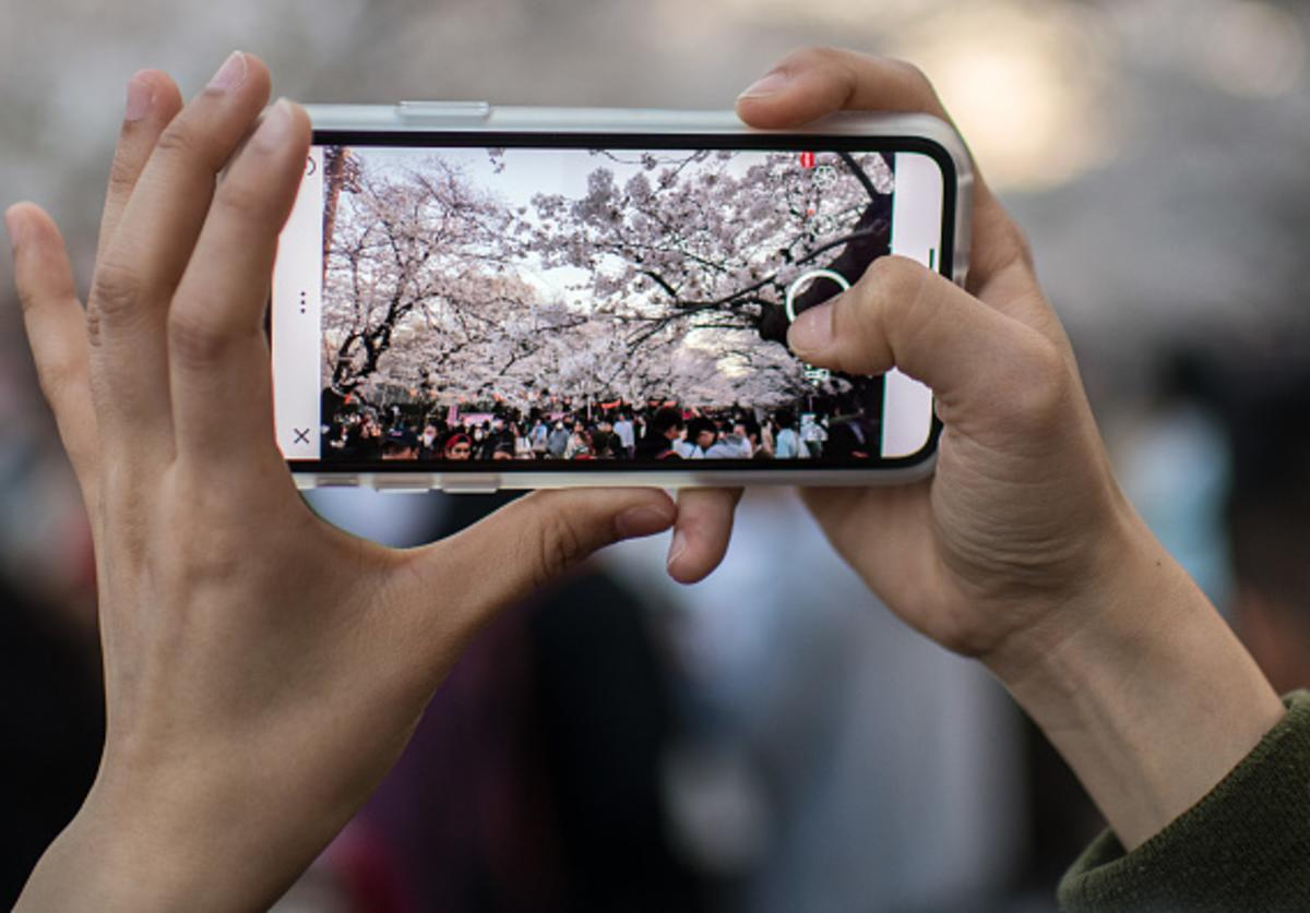 A woman photographs cherry blossom on her smartphone in Ueno Park on March 25, 2018 in Tokyo, Japan.