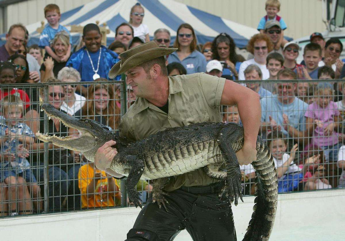 Bert Lucas also known as 'Kachunga' wrestles a 200 pound alligator during a show at the Calvert County Fair September 26, 2003 in Prince Frederick, Maryland. Based in Florida, Kachunga and the Alligator Show have been making appearances in popular shows, fairs and festivals for over 15 years across the U.S.