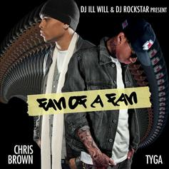 Chris Brown & Tyga - Fan of a Fan