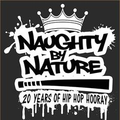 Naughty By Nature - Hip Hop Hooray (DJ Scene Remix)