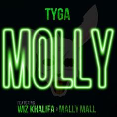Tyga - Molly [CDQ] Feat. Wiz Khalifa & Mally Mall