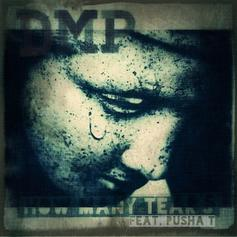 DMP - How Many Tears  Feat. Pusha T (Prod. By Nottz)