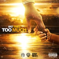 FAT TREL - Too Much (Freestyle)
