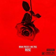 Brian Fresco - Rose Feat. Tree
