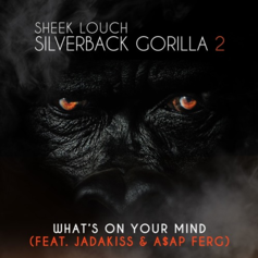 Sheek Louch - What's On Your Mind Feat. Jadakiss & A$AP Ferg