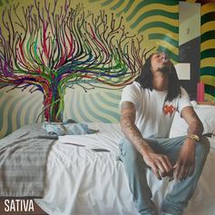 Willy J Peso - Sativa