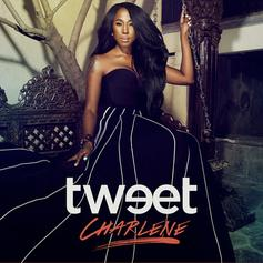 Tweet - Somebody Else Will Feat. Missy Elliott