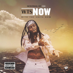Montana Of 300 - WTS Now