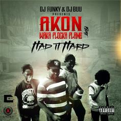 DJ Funky & DJ Buu - Had It Hard Feat. Akon & Waka Flocka