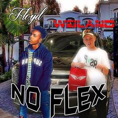 Floyd - No Flex (Feat. Weiland)