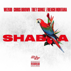 WizKid, Chris Brown, Trey Songz & French Montana - Shabba (Official)
