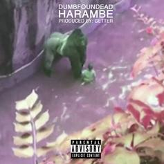 Dumbfoundead - Harambe (Prod. By Getter)