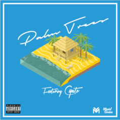 StupidGenius - Palm Trees Feat. Capito