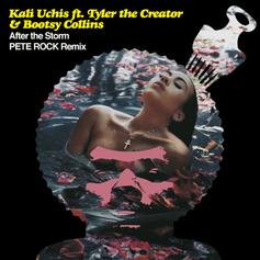 "Kali Uchis' ""After The Storm"" With Tyler The Creator Gets A Pete Rock Remix"