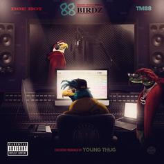 "Doe Boy & TM88 Team Up For New Project ""88 Birdz"""