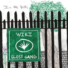 """Wiki Links With Gloss Gang On """"In The Park"""""""