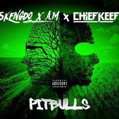 "Chief Keef Joins Skengdo & Am On International Drill Anthem ""Pitbulls"""