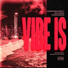 """Chris Brown Holds It Down On Sherwood Marty's """"Vibe Is"""""""