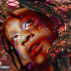 "Trippie Redd Tags In YNW Melly & Juice WRLD For ""6 Kiss"""