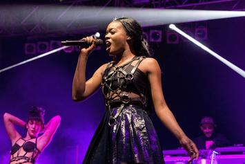 "Azealia Banks Plans ""Broke With Expensive Taste"" Book"