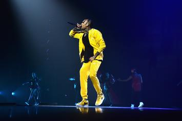 """Every Track On Chris Brown's """"HBOAFM"""" Has Gone Either Gold Or Platinum"""