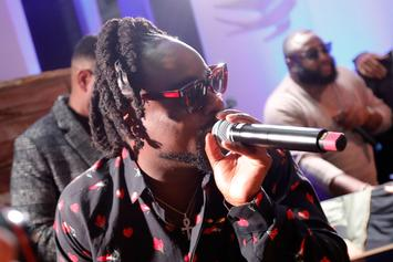Wale Plans To Release Two Albums In 2016