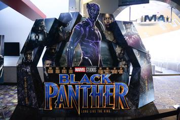 Black Panther Will Officially Break Saudi Arabia's Cinema Ban