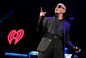Pitbull Wins Case Over Lindsay Lohan Lyrics