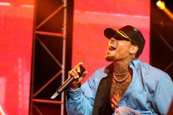 Chris Brown's Mom & Daughter Surprised Him For His Final Tour Performance