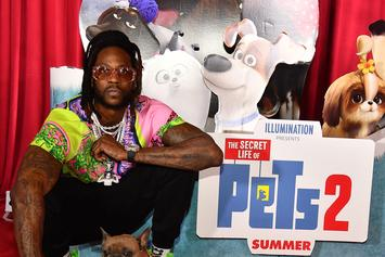 Megan Thee Stallion Meets Rap's Most Famous Dogs, Including 2 Chainz's Trappy