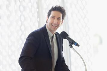 "David Schwimmer Gets Dragged For Overlooking ""Living Single"" With ""Friends"" All-Black Cast Idea"