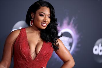Megan Thee Stallion Didn't Tell Police She Was A Victim, LAPD Say